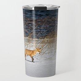 Red Tail Fox on Fish Hook Lake Travel Mug