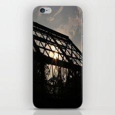 Greenhouse Effect iPhone & iPod Skin