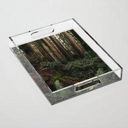 Redwood Forest Floor Acrylic Tray