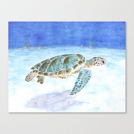 Sea turtle underwater Canvas Print