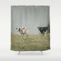 cows Shower Curtains featuring Moo Cows by Pure Nature Photos