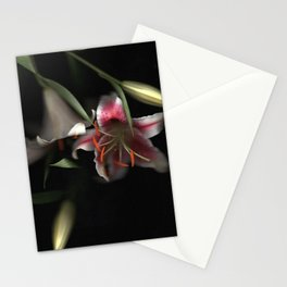 Flowering Lilies | Scanography Stationery Cards