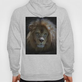 Portrait of a Lion Hoody