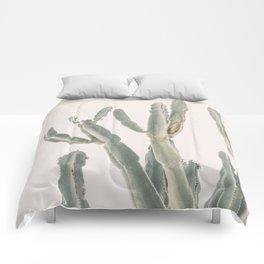 Sunrise Cactus Comforters