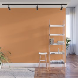 Asymmetrical Glow ~ Apricot Wall Mural