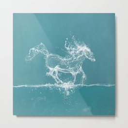 The Water Horse Metal Print