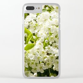 Summer White blossom Clear iPhone Case