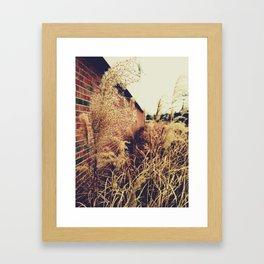 'Old & Gray' Framed Art Print