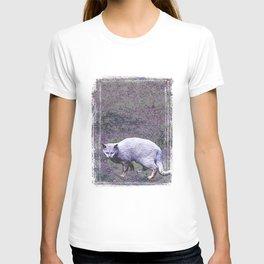 Cautious cat wary of stranger ... me! T-shirt