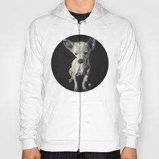 Chihuahua dog  Hoody