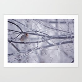 Winter friend 3. Art Print