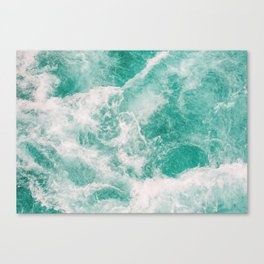 Whitewater 1 Canvas Print