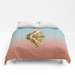 Black Witch Moth Comforters