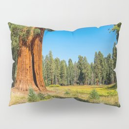 USA Sequoia and Kings National Park Nature Parks Trunk tree Grass park Pillow Sham