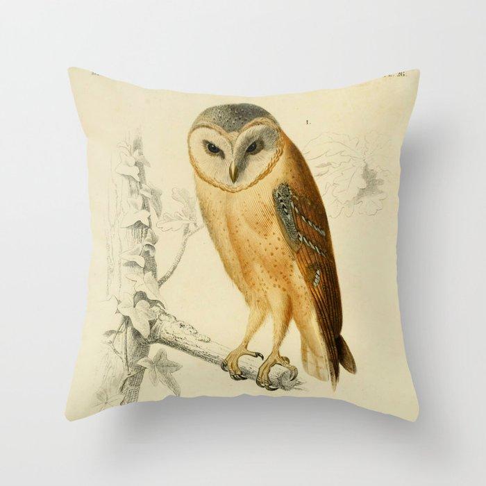 Naturalist Barn Owl Throw Pillow By Bluespecsstudio Society6