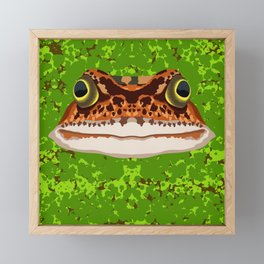 Frog Pond Framed Mini Art Print