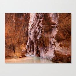 The Narrows Zion National Park Utah Canvas Print