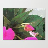hot pink Canvas Prints featuring Hot Pink by Glenn Designs