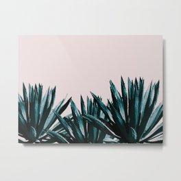 Pastel agave Metal Print