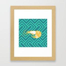 Shrimpy Framed Art Print