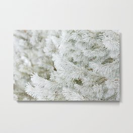 Frost Covered Pine Tree Metal Print