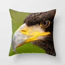 Intense Gaze of a Golden Eagle Throw Pillow