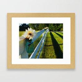 From the Farm Framed Art Print