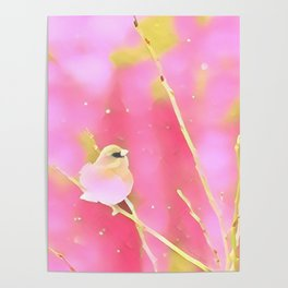Junco Pink Yellow by CheyAnne Sexton Poster