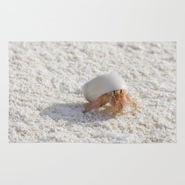 Hermit crab on the move Rug