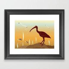 A Full Ibis Framed Art Print