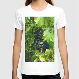 Grapes in the Sunshine T-shirt