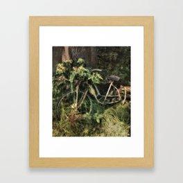 Under the Oak Tree Framed Art Print