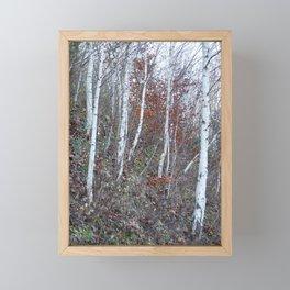 A walk in December Framed Mini Art Print