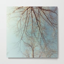 The Trees - Long Lost Summer Metal Print
