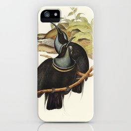 Magnificent Rifle-bird (Ptiloris magnifica) illustrated by Elizabeth Gould (1804–1841) for John Goul iPhone Case