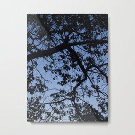 Blue Sky and Silhouette Metal Print