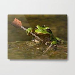 Frog Perspective Metal Print