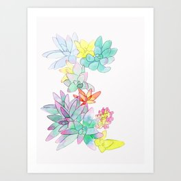 succulent watercolor Art Print