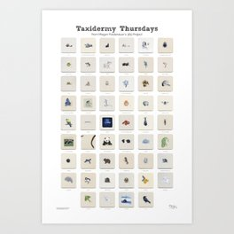 Taxidermy Thursdays: 52 Weeks of Wildlife Watercolor Paintings Art Print