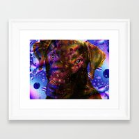 lab Framed Art Prints featuring Chocolate Lab by Roger Wedegis