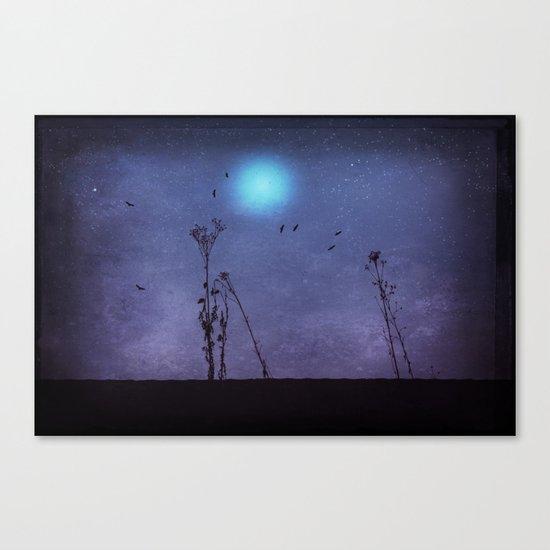 night dance Canvas Print