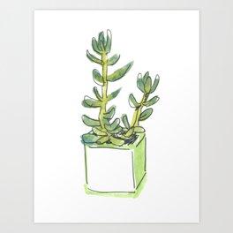 WC&S - Jade Art Print