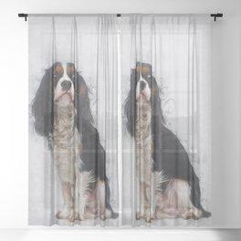 Cavalier King Charles Spaniel Sheer Curtain