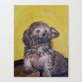 Yellow Asher Canvas Print