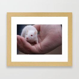 The Little One Framed Art Print