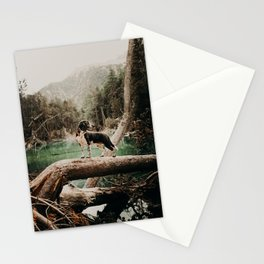 /// wild Max at the Lac Verde /// Valle Etroite Stationery Cards