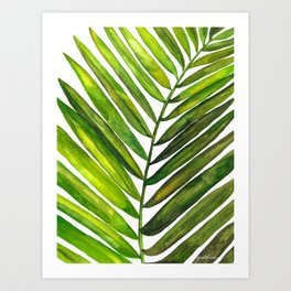 Tropical Collection Part III Art Print