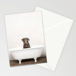 Chocolate Lab in Vintage Bathtub Stationery Cards