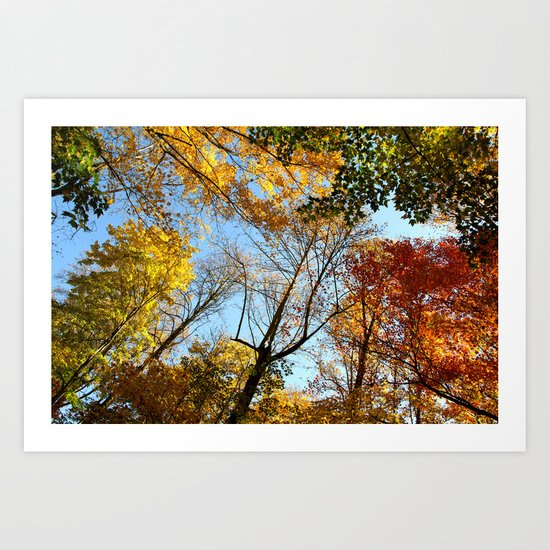 Autumns Up!   (A Fall View)  Art Print