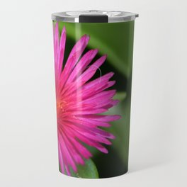 Pink Flower of Succulent Carpet Weed  Travel Mug